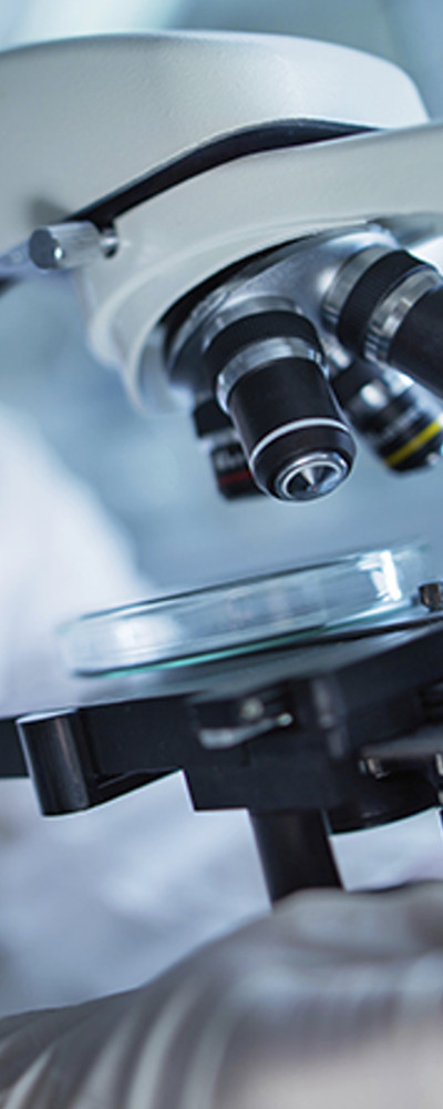 Leased microscope focused on glass petri dish in medical laboratory.
